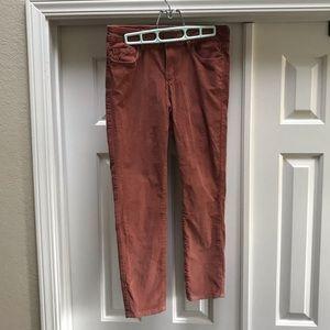 GARAGE Burnt Orange Corduroy-Like Pants